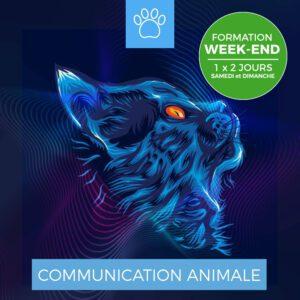 Centre Eden Formation Communication Animale Week-End 1-1