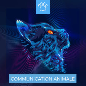 Centre Eden Formation Communication Animale